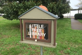 A local craftsman got creative and used a spray-painted salad bowl for the dome on Central Christian Church's Little Free Library. (Rhiannon Gilbert/ Sidelines)