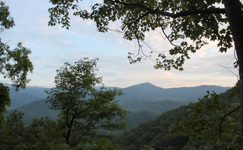 A trail in Gatlinburg, Tennessee. (MTSU Sidelines/ Olivia Ladd)